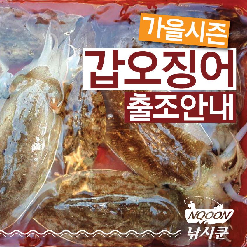 가을시즌-갑오징어배너.jpg